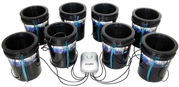 The RootSpa - 8 Pack Kit