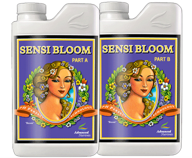 Sensi Bloom A/B 1L Set