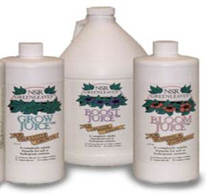 NSR Greenleaves