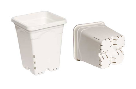 "5"" x 5"" Square White Pot, 7"" Tall - Each"