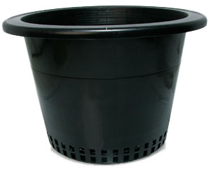"10"" Mesh Bottom Pot"