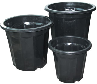 Black Plastic Planter - 3 Quart