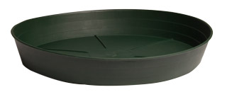 Clear Saucer - 14 Inch