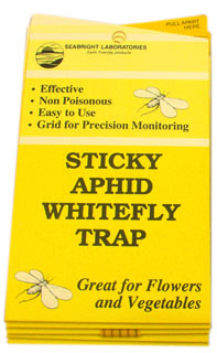 Sticky Whitefly Traps, 5 Pack
