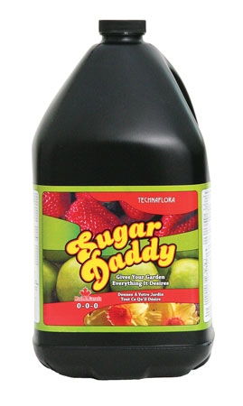 Sugar Daddy - Gallon