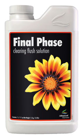 Final Phase 1L - Click Image to Close