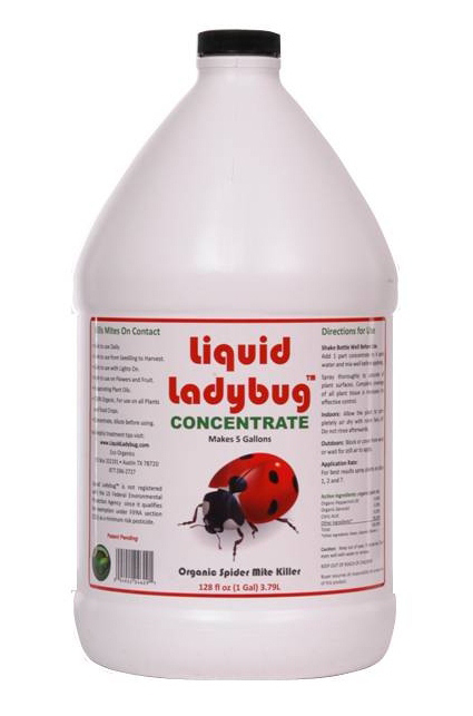 Liquid Ladybug1 Gallon Concentrate - Free Shipping